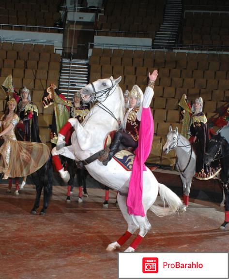 Цирк легенда тамерлана нугзарова отзывы отрицательные отзывы