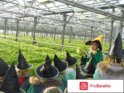Агрокомбинат московский экскурсии