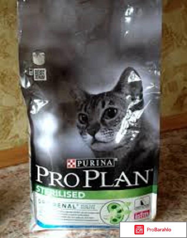 Pro plan для кошек отрицательные отзывы