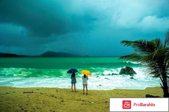 Погода в тайланде в августе отзывы туристов отрицательные отзывы