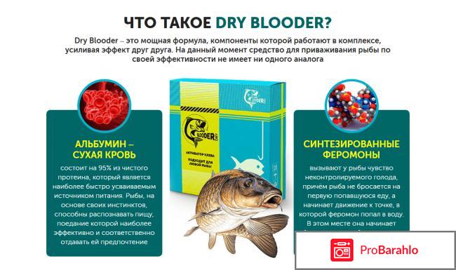 Сухая кровь Dry Blooder отрицательные отзывы