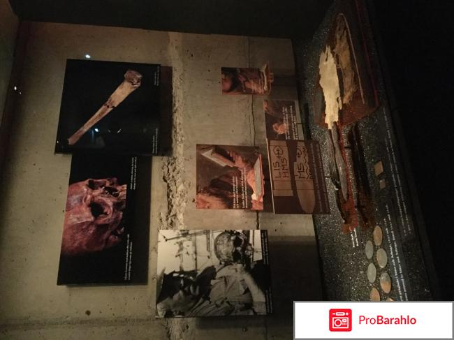 Музей Vasa Швеция отрицательные отзывы