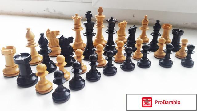 Электронные шахматы отрицательные отзывы
