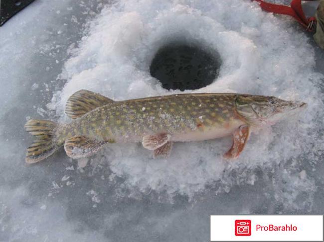 Снасти для зимней рыбалки на щуку