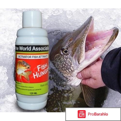 Fishhungry активатор клёва обман