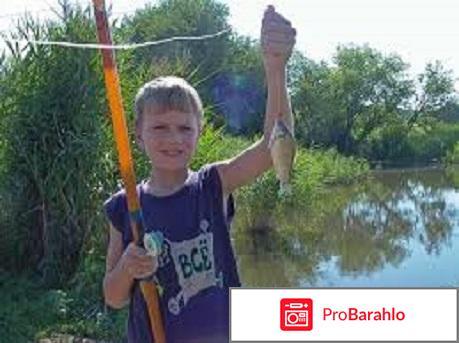 Рыбалка карась отзывы владельцев