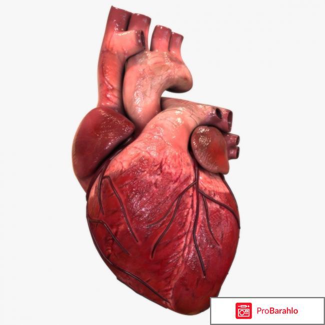 Атероклефит отзывы врачей кардиологов цена обман