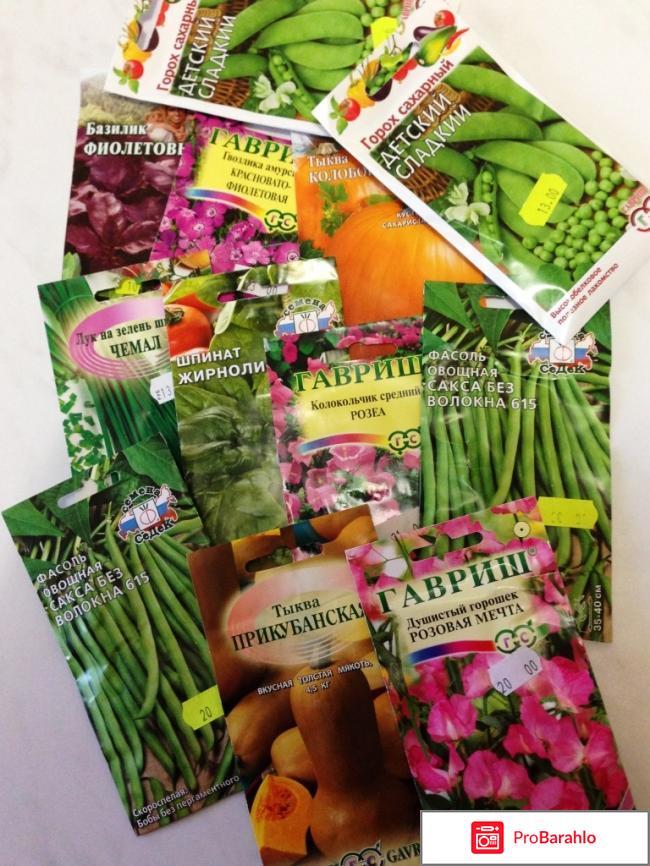 Купить семена почтой рф