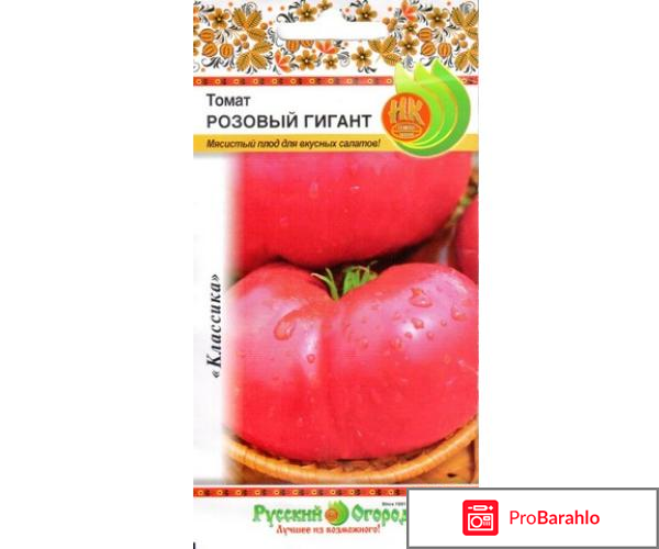 Русский огород отзывы покупателей реальные отзывы
