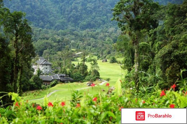Малайзия отзывы туристов 2017 отзывы владельцев