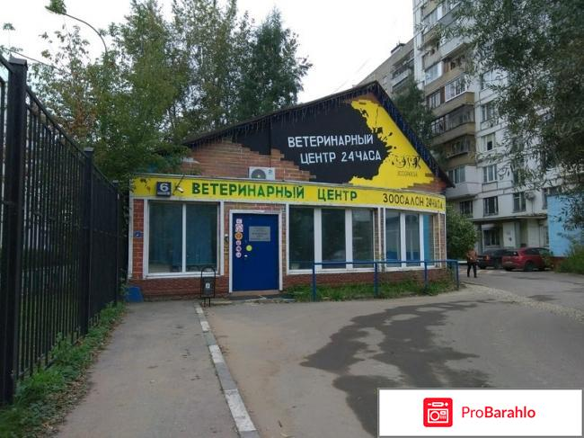Лучшие ветклиники москвы по отзывам отзывы владельцев