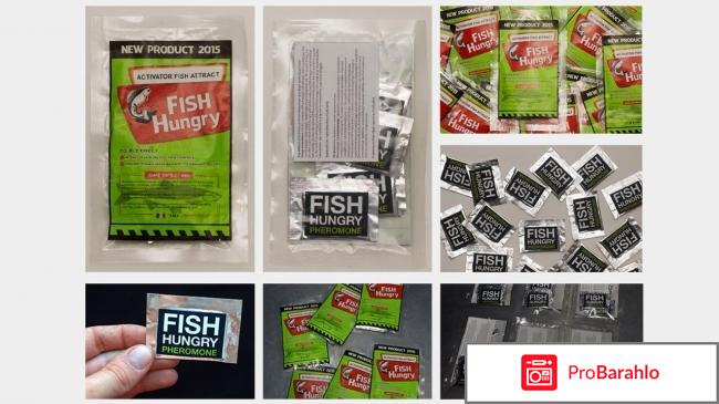 Fishhungry состав обман