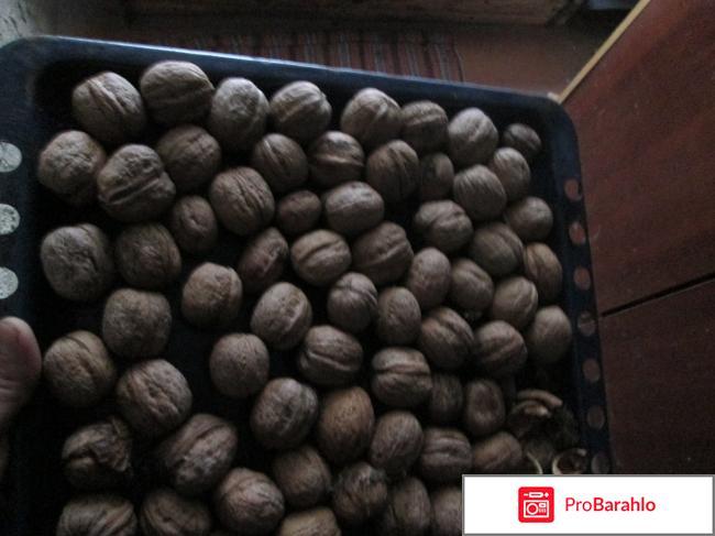 Грецкие орехи - отзывы